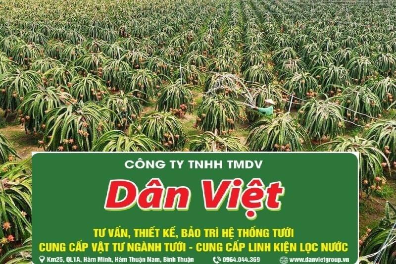 Hệ thống tưới nhỏ giọt của Dân Việt